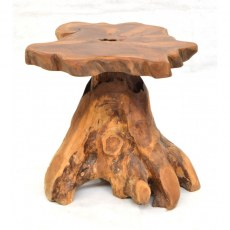 Tree Root Lamp Table